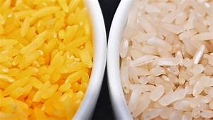 In A Grain Of Golden Rice  A World Of Controversy Over Gmo