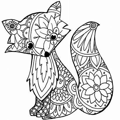 Blanket Blankets Drawing Custom Soft Minky Fox