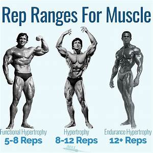 Rep Ranges For Muscle