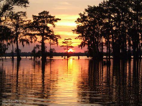 Image result for images atchafalaya bayou