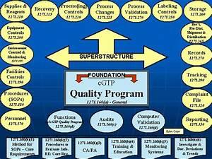 Quality Management System Development