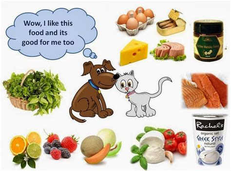 good food  dogs cats  guide ottawa dog training