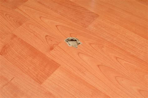 laminate flooring repair 7 things to know about laminate floor repair the flooring lady