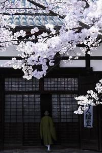 Architecture Japonaise Traditionnelle : cannelle pinterest japon japon paysage et voyage japon ~ Melissatoandfro.com Idées de Décoration