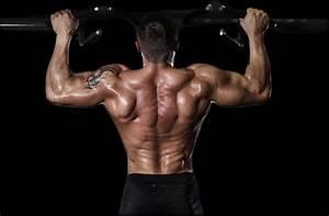 Image Homme Musclé : conseils et exercices pour muscler le dos ~ Medecine-chirurgie-esthetiques.com Avis de Voitures