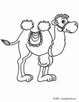 Station Coloring Camel Chameau Kirigami Camels Outlines Từ �ã Lưu sketch template