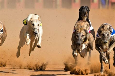 Coin Race: Ethereum Price Ends Losing Streak, Bitcoin ...