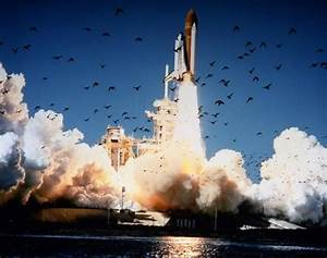 Space Shuttle Challenger explodes in 1986 - NY Daily News