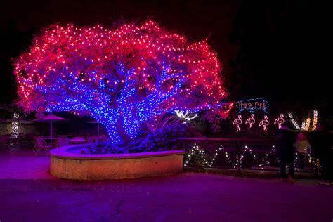 zoo zoolights oakland holidays courtesy glow san