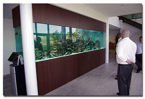 la fabrication d aquarium par abri sous roche