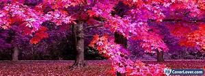 pink, autumn, seasonal, facebook, cover