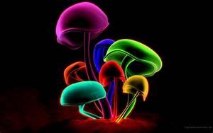 Mushrooms Wallpapers | Desktop Wallpapers