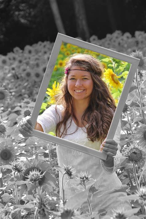 senior pic  sunflowers  picture frame  misty