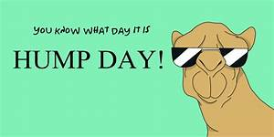 Happy Hump Day Quotes. QuotesGram