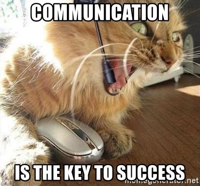 Success Cat Meme - communication is the key to success customer service cat meme generator