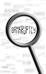long  bankruptcy stay   credit report