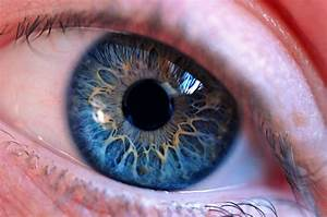 Eye by anniewinge on DeviantArt