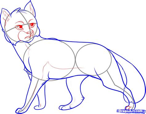 How To Draw Graystripe, Step By Step, Characters, Pop