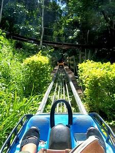 Travelholic  Manual Roller Coaster At Datanla Falls In