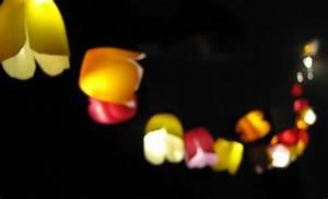 Guirlande Lumineuse Fleur : cr er une guirlande d 39 ext rieur color e id e cr ativeid e cr ative ~ Teatrodelosmanantiales.com Idées de Décoration