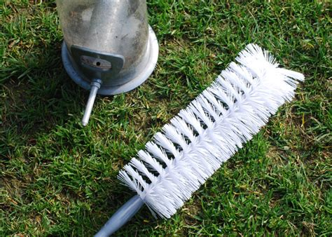 buy bird feeder cleaning brush delivery by waitrose