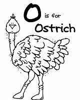Ostrich Coloring Ox Musk Pages Printable Clipart Advertisement Getcolorings sketch template