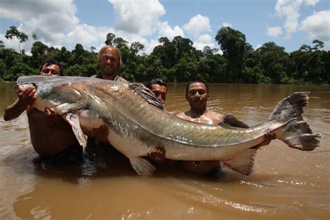 Bid Fish Hangin With Quot Big Fish Quot Jakub V 225 Gner Fiskef 252 Ralle