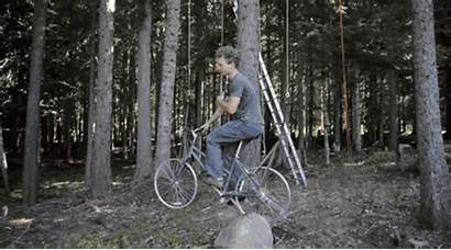 Treehouse Bicycle Sheer Elevator Outdoors Tree Month