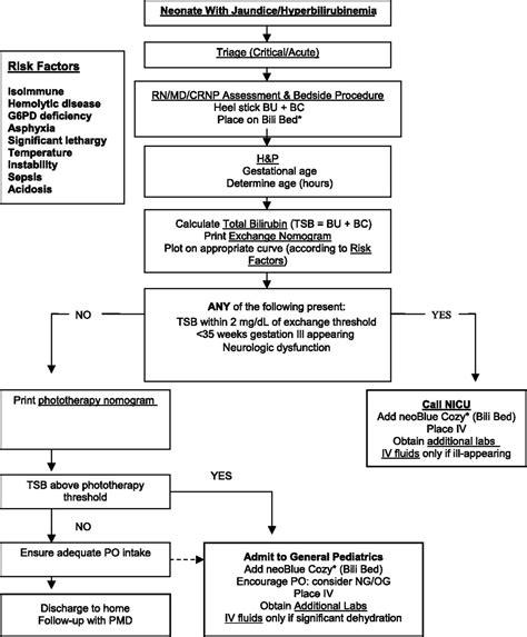 Management Of Neonates With Hyperbilirubinemia Improving