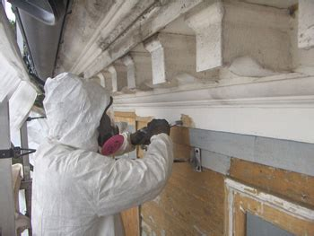 lead based paint removal jakela  environmental services