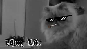 """¿Qué significa """"Thug Life"""" en español?"""