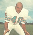 Image Gallery of Dick Anderson | NFL Past Players
