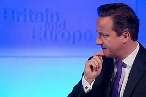 David Cameron against UK adopting Norway-style EU ...