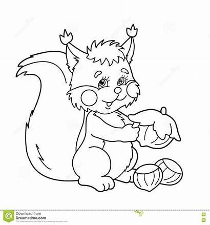 Coloring Nuts Cartoon Squirrel Outline Bo