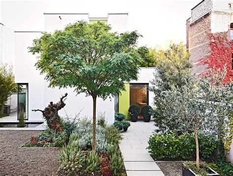 immergrüne bepflanzungen am gartenzaun vorgarten gestalten und bepflanzen garten terrasse