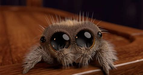 Adorable Animated Spider Will Make Even Arachnophobes Smile