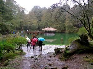visiting alishan national park in taiwan indefinite adventure