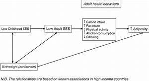 Path Diagram Of The Association Between Childhood Ses And