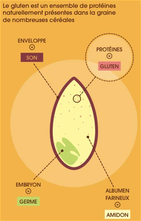 qu est ce que le gluten initiative gluten