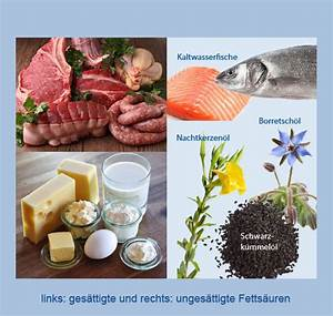 Omega 3 Fettsäuren Lebensmittel : nahrungserg nzung hypo a omega 3 fetts uren auf das verh ltnis kommt es an ~ Frokenaadalensverden.com Haus und Dekorationen