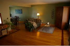 Photos Of Living Rooms With Green Walls by Sage Green Living Room Walls