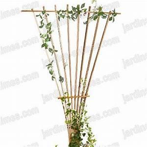 Treillis Pour Plantes Grimpantes : treillage eventail bois fsc france treillages support ~ Premium-room.com Idées de Décoration
