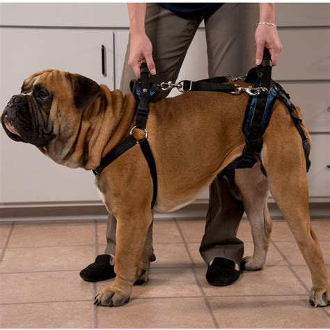 dog lifting aid  harness dog wheelchairs dog carts