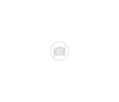 Nationalgalerie Neue Berlin Space Architecture Museum