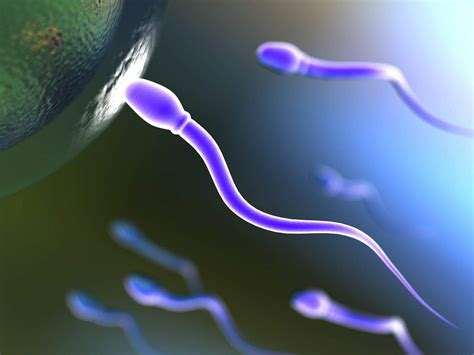 amazing news update 7 unique facts about semen
