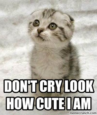 Dont Cry Meme - dont cry meme 28 images i don t always cry over spilt milk but when i do someone don t cry