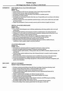 Analytics Specialist Resume Samples