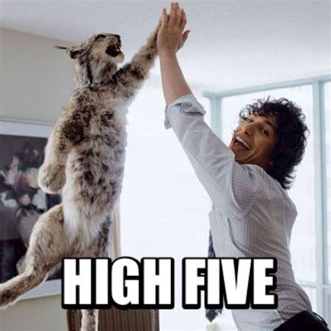 Meme High Five - high five meme memeland pinterest meme