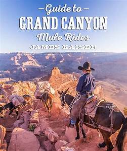 Mule Rides In Grand Canyon National Park  U2022 James Kaiser