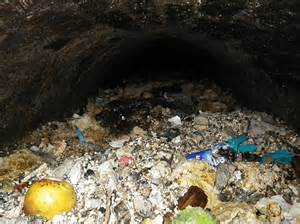 Fatberg The Size Of A Jumbo Jet Strikes Central London. Inexpensive Flooring Options For Kitchen. Traditional Kitchen Colors. Kitchen Floor Alternatives. Two Color Kitchen. Kitchen Floor Rug. Kitchen Counters And Backsplashes. Painting Kitchen Tile Countertops. Ideas For Backsplash For Kitchen